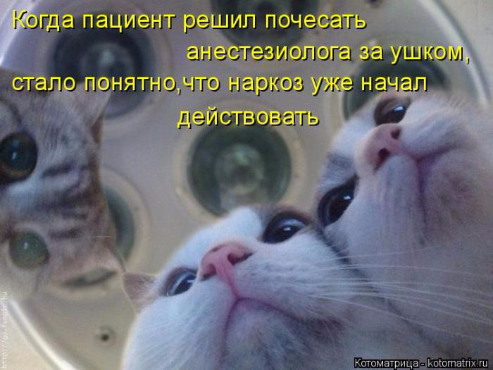 1432240953_17 (700x525, 277Kb)