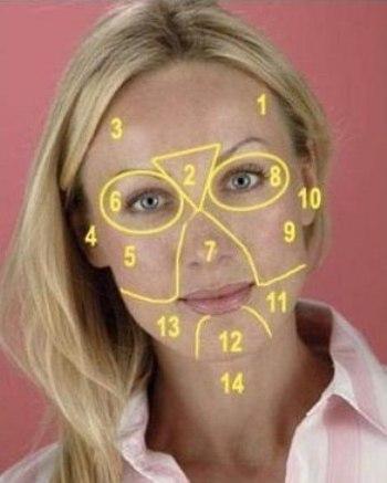 карта лица. (350x437, 26Kb)