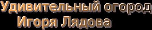 cooltext118966667670081 (526x104, 40Kb)