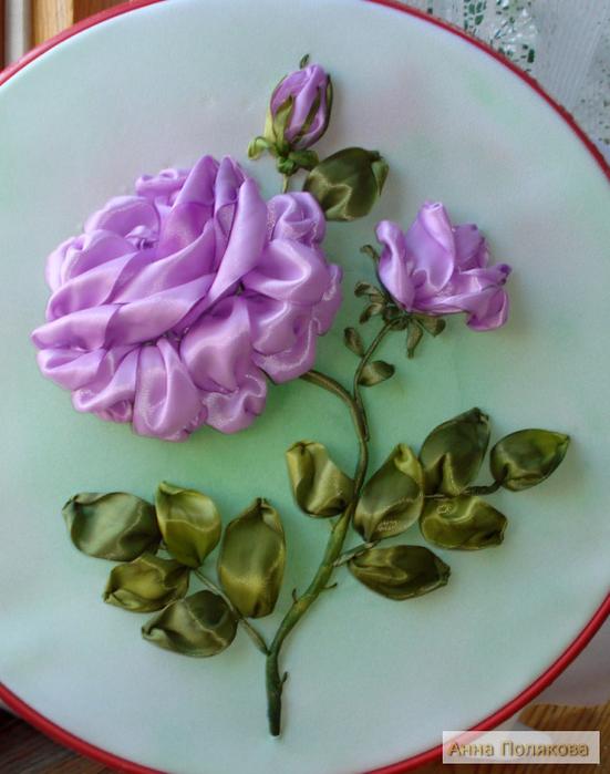 Сиреневая роза.