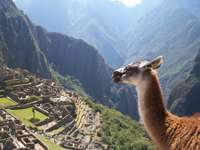 3085196_Machu_Picchu_Peru (700x525, 115Kb)
