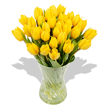 5420033_yellow_tulips (350x350, 85Kb)