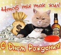 С Днем Рождения - кот. imgpreview (210x191, 16Kb)