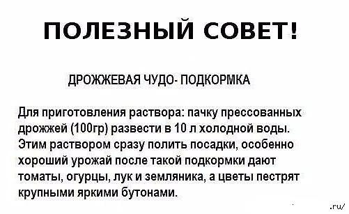 3768849_sovet_po (501x307, 30Kb)