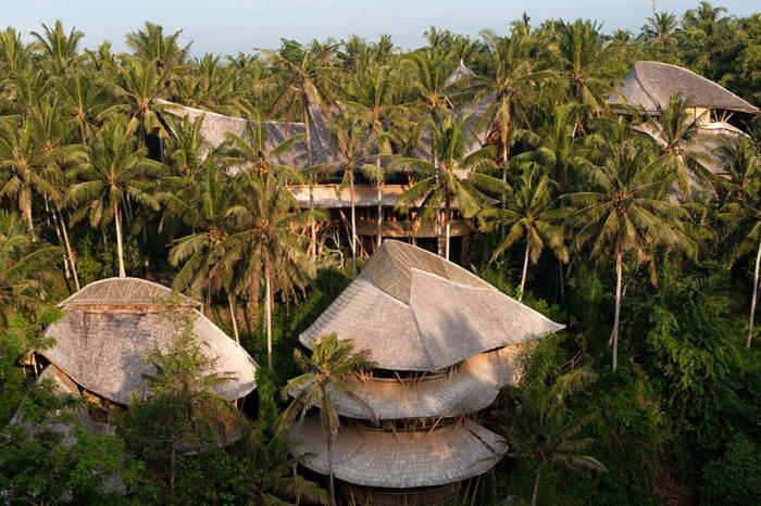 бамбуковые дома Элоры Харди 1 (700x466, 410Kb)