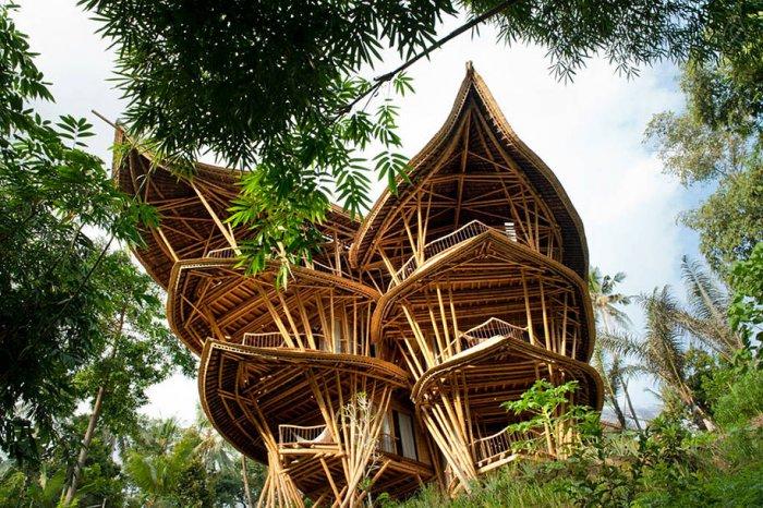 бамбуковые дома Элоры Харди 2 (700x466, 512Kb)