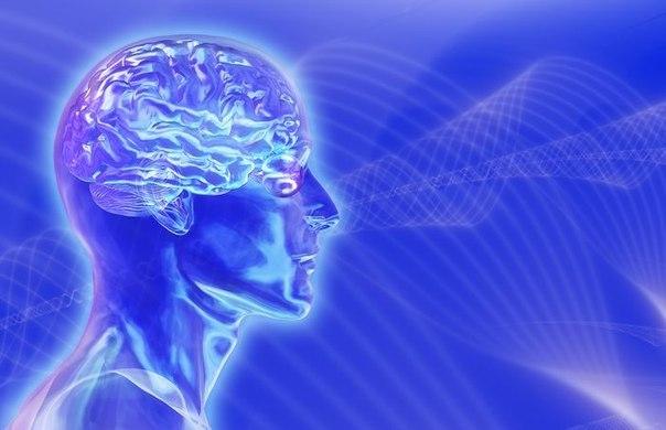 Как мозг определяет, что красиво, а что – нет (604x390, 41Kb)