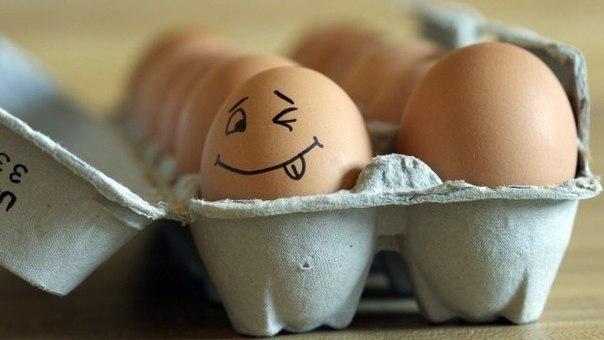 6 полезных свойств куриных яиц, о которых важно знать (604x340, 34Kb)