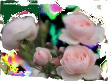 4897960_111_4 (225x165, 66Kb)