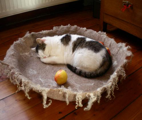 войлочные лежанки для кошек 3 (497x421, 160Kb)