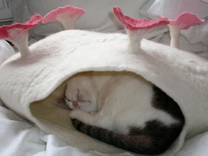 войлочные лежанки для кошек 5 (700x524, 220Kb)