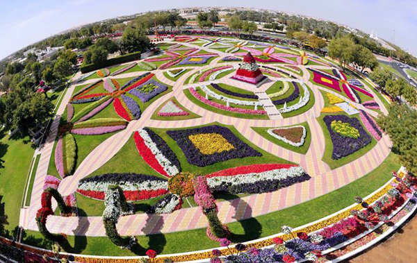 24Mar_Dubai_Miracle_Garden_3 (600x379, 417Kb)