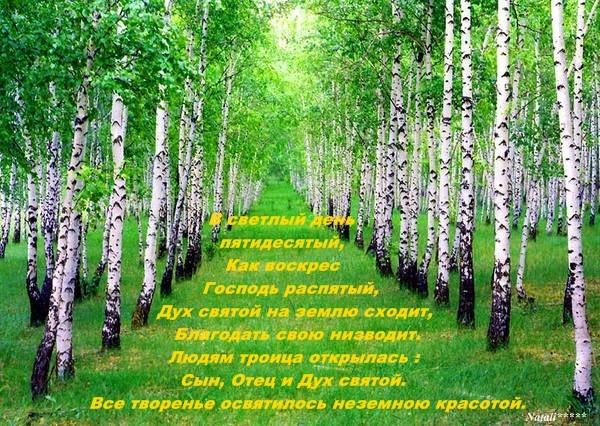 4263346_75188036_v_den_pyatidesyaticuy (600x426, 123Kb)