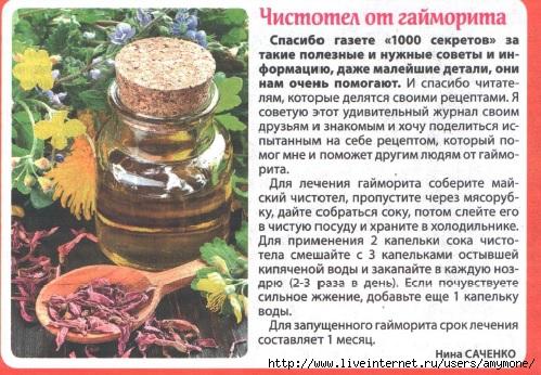 Как лечить гайморит чистотелом в домашних условиях