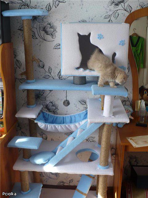 Как сделать игровой уголок для кота своими руками
