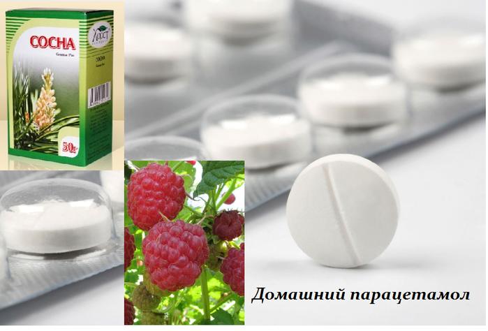 1433161298_domashniy_paracetamol (699x474, 344Kb)