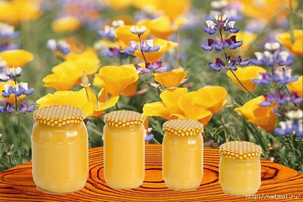 мёд/5186405_med3 (600x401, 147Kb)