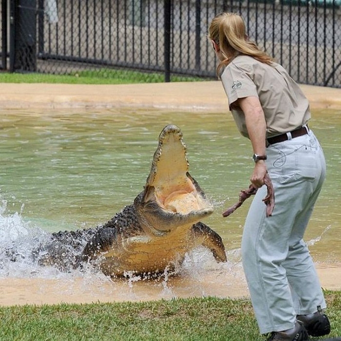 Bindi Irwin 6 photo (700x700, 494Kb)
