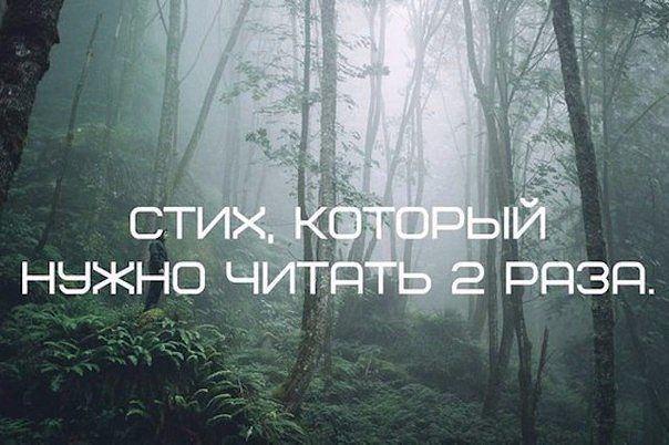 5320643_44444 (604x402, 52Kb)