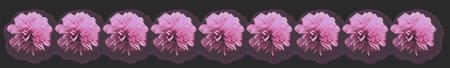 pic (450x68, 47Kb)