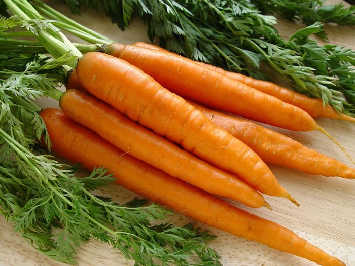 морковь фото 1 (700x525, 534Kb)