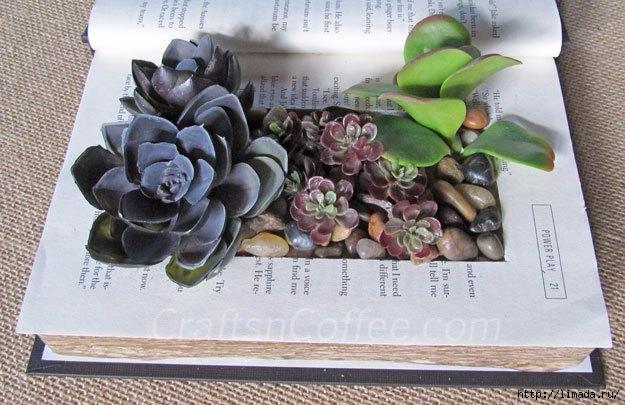 planting-faux-succulents (625x405, 187Kb)