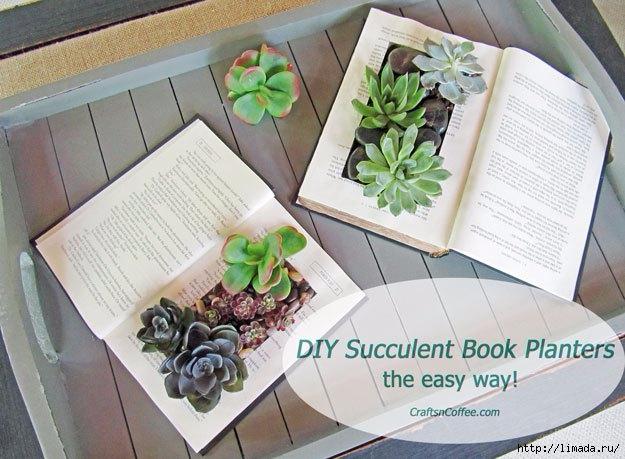 succulent-book-garden-diy (625x459, 193Kb)