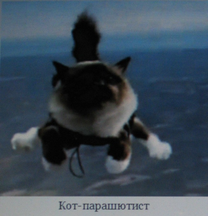 http://img0.liveinternet.ru/images/attach/c/4/123/66/123066380_IMG_0859.JPG