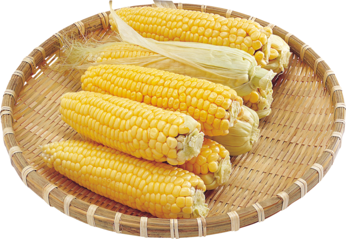 corn_PNG5280 (700x483, 608Kb)