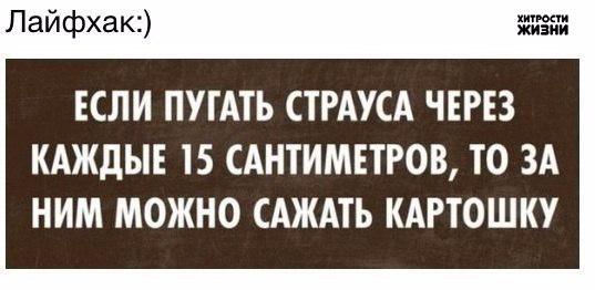 1401822213_frazochki-7 (537x262, 103Kb)