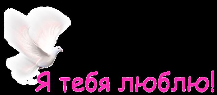 !    ! (700x306, 85Kb)