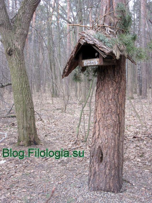 Кормушка для птиц на дереве в Покровском-Стрешнево  (525x700, 113Kb)