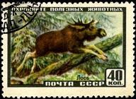 YtSU 1909 Лось (192x140, 20Kb)
