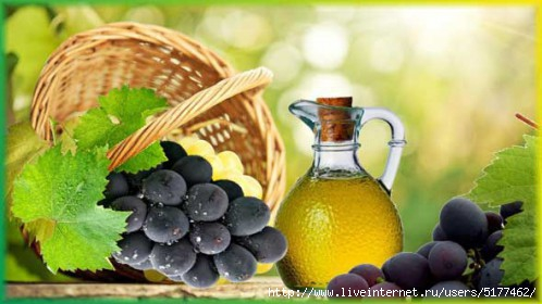5177462_Grape_seed_oil_3e1418123007162_1_ (498x280, 88Kb)