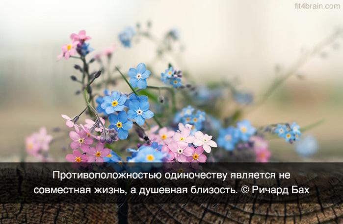 Про духовную близость и одночество/3241858_0_f1410_66d9e616_orig (700x458, 106Kb)