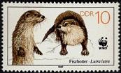 YtDD 2732 .Всемирный фонд охраны дикой природы WWF 1988 (173x105, 13Kb)
