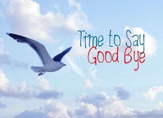 Пора прощаться. Летящий голубь в небе./3241858_dc303 (544x393, 18Kb)