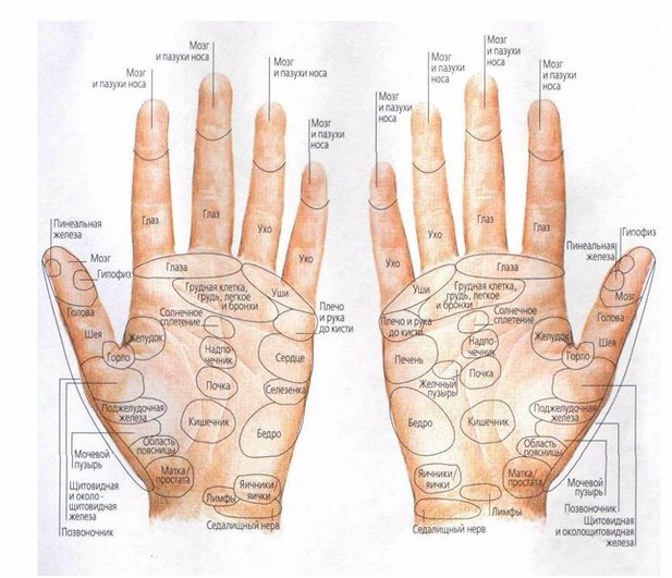 Японский пальцевый массаж (617x531, 276Kb)