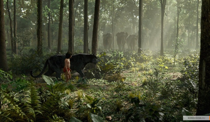 kinopoisk.ru-The-Jungle-Book-2703208 (700x408, 110Kb)