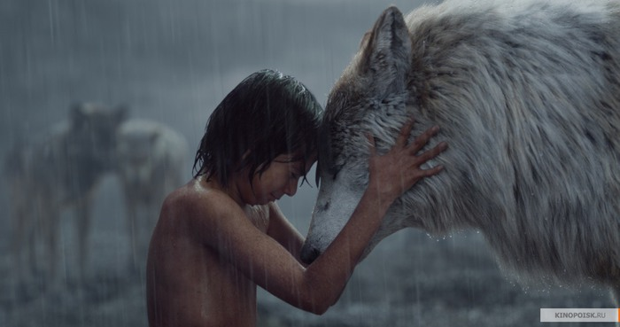 kinopoisk.ru-The-Jungle-Book-2704429 (700x369, 46Kb)