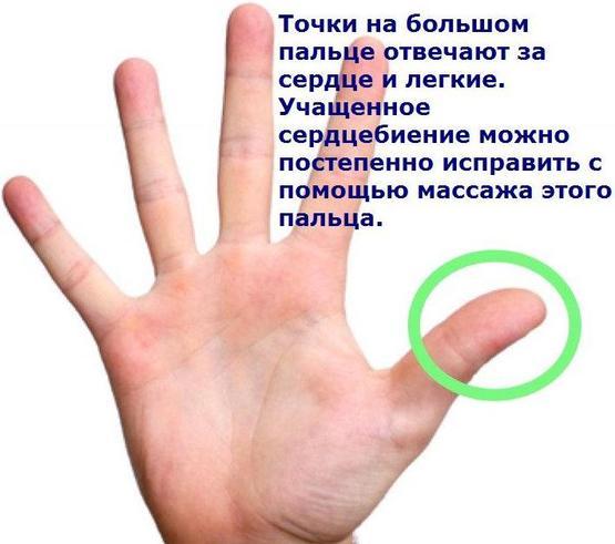 5462122_1_oie_vjGIApUpK88P (555x491, 34Kb)