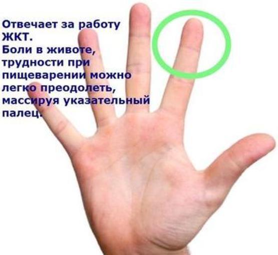5462122_2__oie_qI6gIv3BIr4t (555x509, 27Kb)