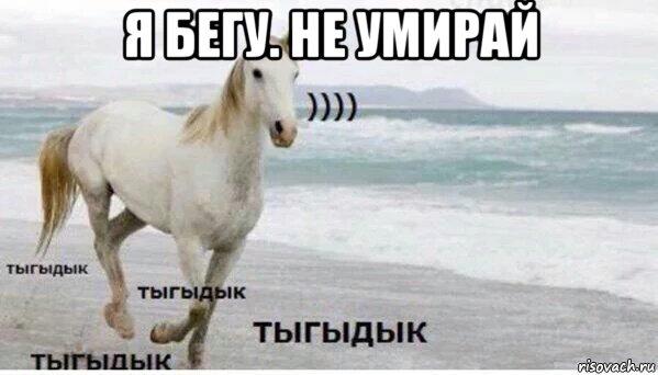 tigidik_97517672_orig_ (599x342, 37Kb)