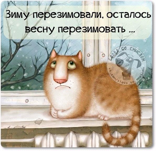 http://img0.liveinternet.ru/images/attach/c/4/129/62/129062780_1428258865_frazki3.jpg