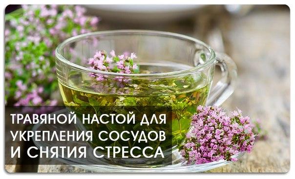1460716074_Travyanoy_nastoy_dlya_ukrepleniya_sosudov_i_snyatiya_stressa (604x366, 62Kb)