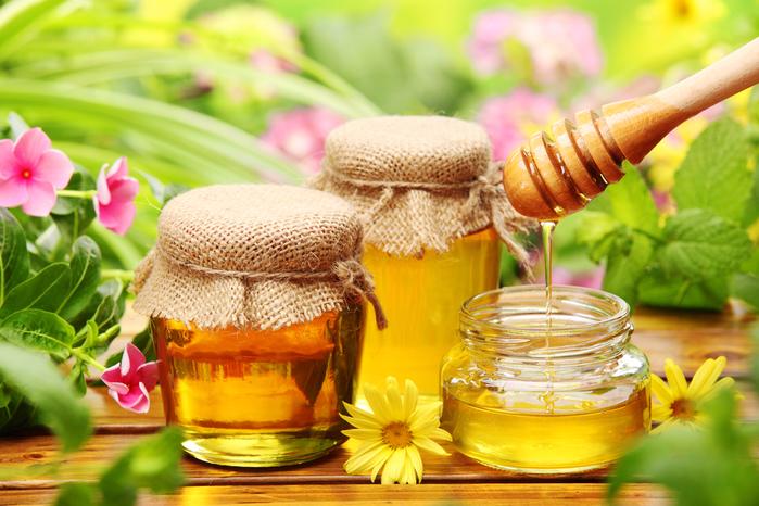 мёд (700x466, 458Kb)