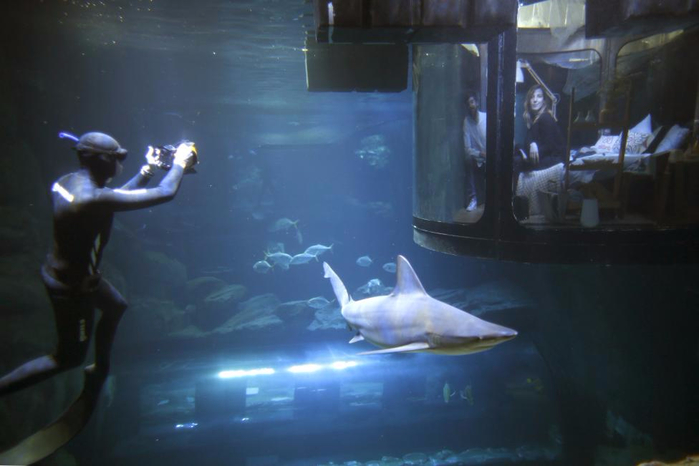 подводная спальня с акулами 1 (700x466, 222Kb)