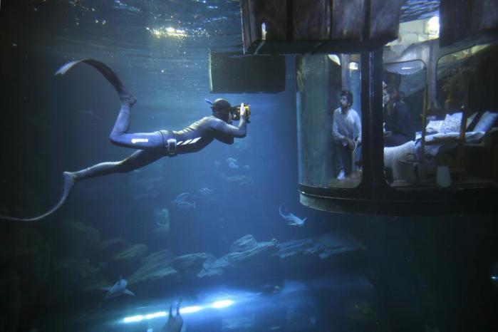 подводная спальня с акулами 7 (700x466, 226Kb)
