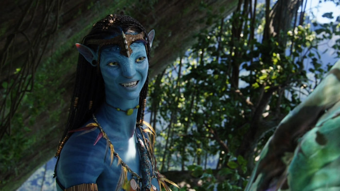 Avatar_Extended_Cut_BDRip_720p.mkv_snapshot_01.05.35__2010.12.26_17.16.34__1_ (700x393, 78Kb)