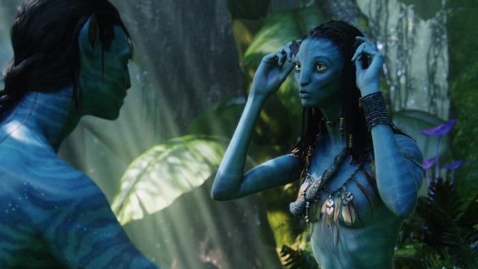 Avatar_Extended_Cut_BDRip_720p.mkv_snapshot_01.07.34__2010.12.26_23.31.45_ (700x393, 61Kb)